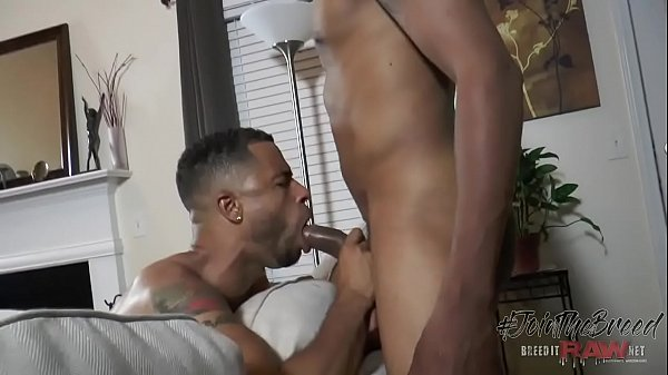 Creampie, Creampied, Black creampie, Gaping, Big gay, Big cock creampie