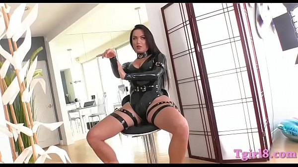 Anal shemale, Shemale dominant, Hot busty